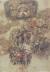 Giovanni da Udine Studi di mazzi di fiori e frutti. Penna e inchiostro bruno, acquarellato con pigmenti colorati e lumeggiato in bianco, 292x200 mm. Vienna, Albertina [1024x768]